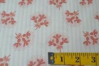 Ashford 24550-D  per 10 cm